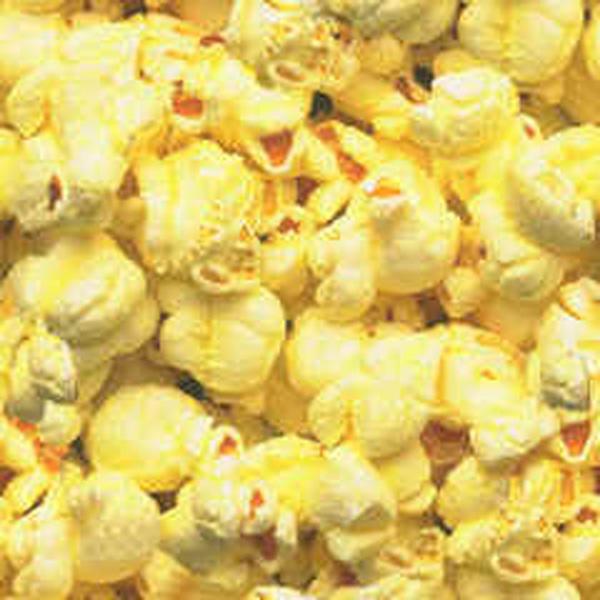 Popcorn Fanatic (2/4)